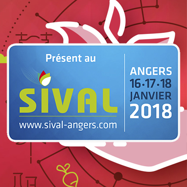 Article_SIVAL2018
